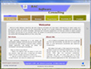 FLASH Website of BAC Software Consulting.